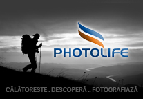 Workshopuri Photolife