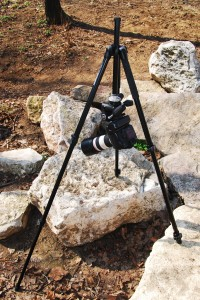Manfrotto 294