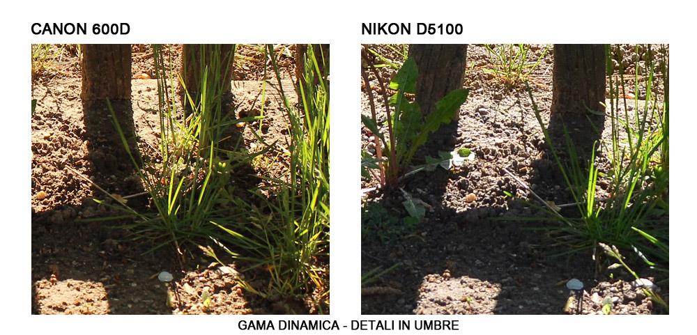 Gama Dinamica - Detaliile din umbre