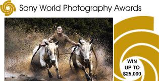 Premiile Mondiale Sony pentru Fotografie 2012