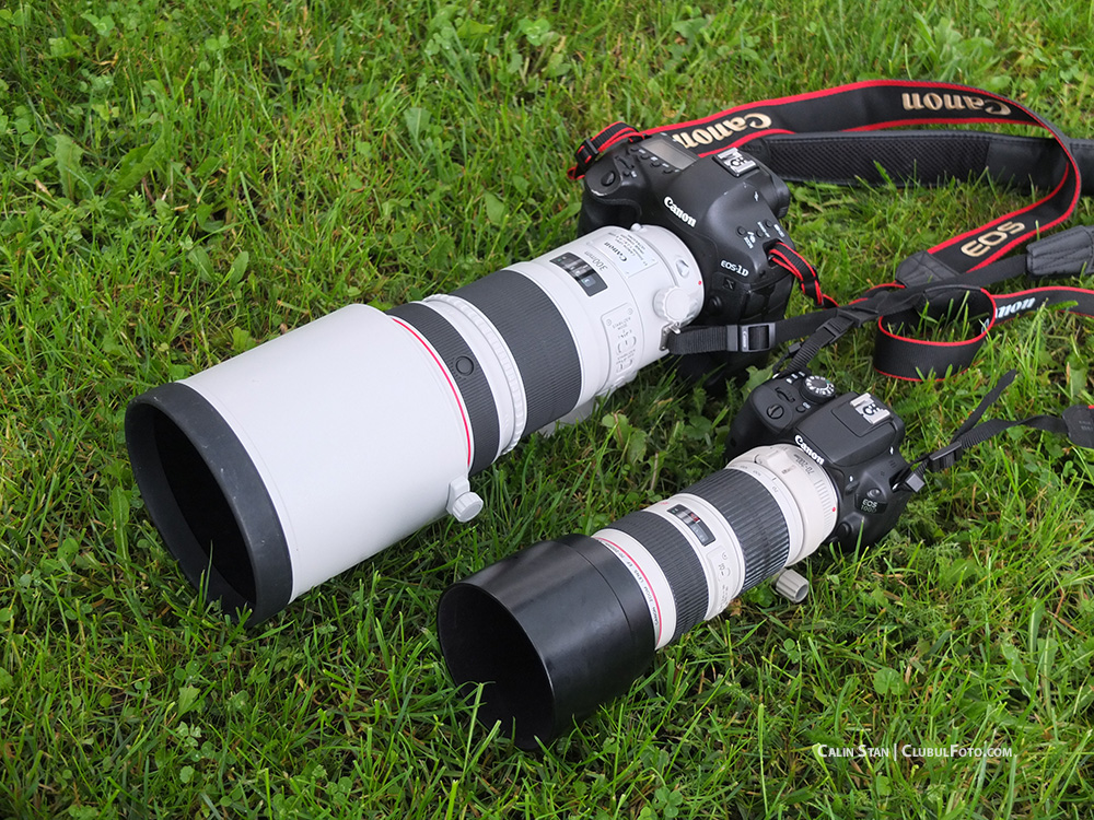 Canon 100D in test, langa Canon 1DX si obiectivul de 300mm pregatit pentru tura wildlife
