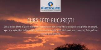 Curs foto la Bucuresti