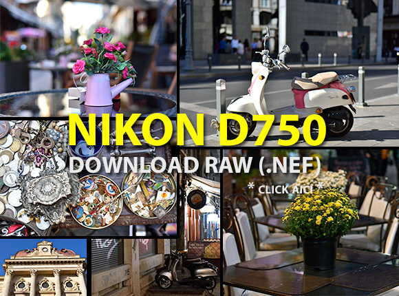 Nikon D750 download NEF