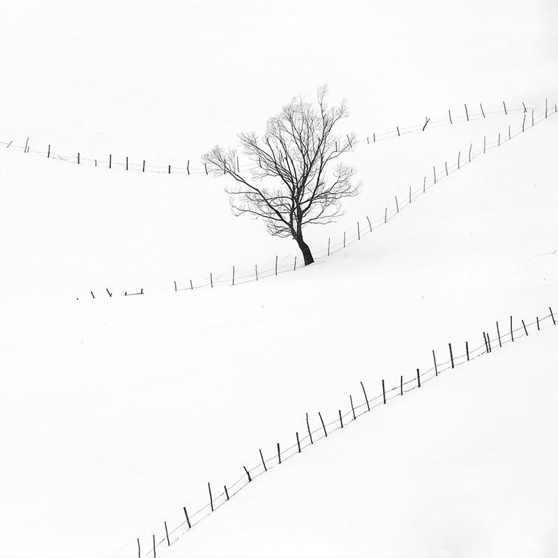 Iarna la Sirnea (Rucar-Bran)