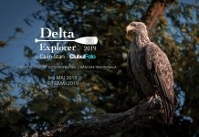 Delta Explorer 2019 by Calin Stan