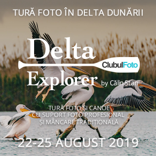 Tura foto in Delta Dunarii