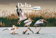 Delta Explorer 2020